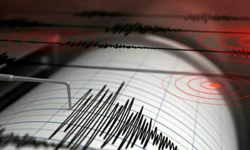 Seismograf gempa bumi.